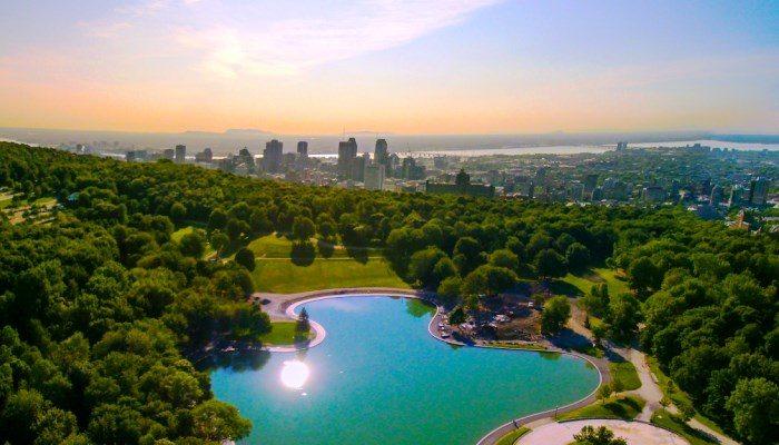 Top 5 des spots à Barbecue de Montréal