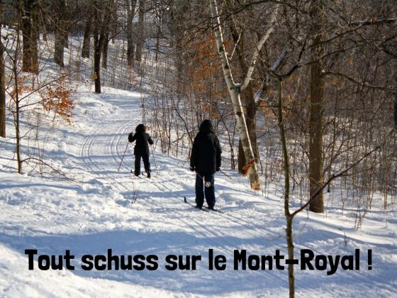 activite_plein_air_hiver_montreal