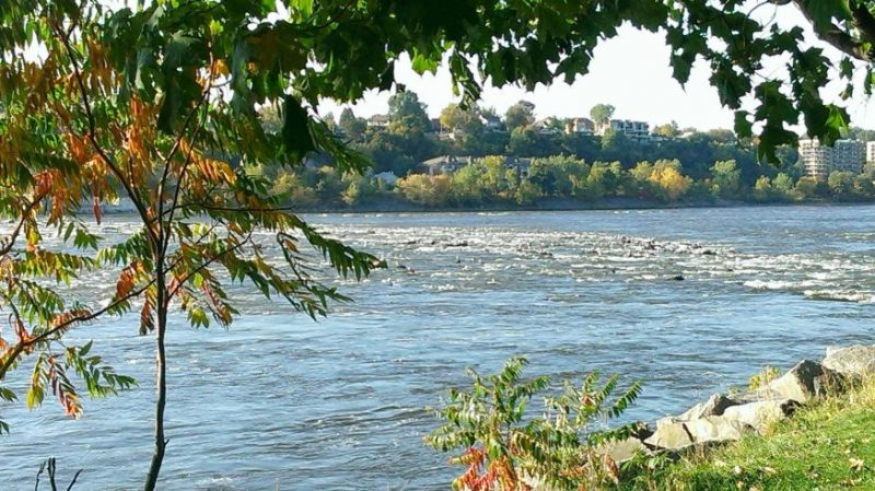 Parc Nature de l'île de la Visitation | Quoi faire le dimanche à Montréal | Montréal CityCrunch