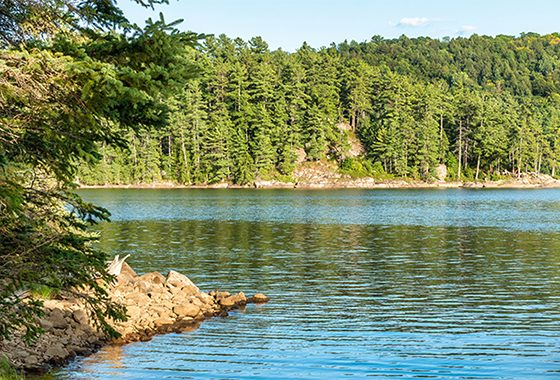 canot-camping-lac-du-poisson-blanc-laurentides-montreal-city-crunch