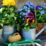 bons-plans-pour-amenager-jardin-balcon-blogue-montreal-citycrunch