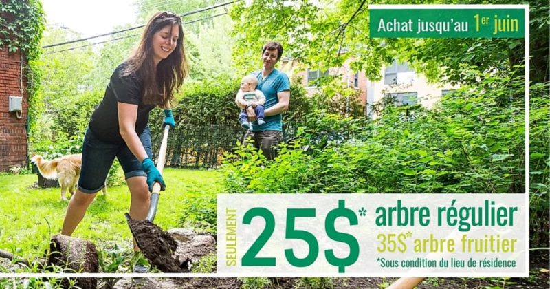 bons-plans-pour-amenager-jardin-balcon-blogue-montreal-citycrunch