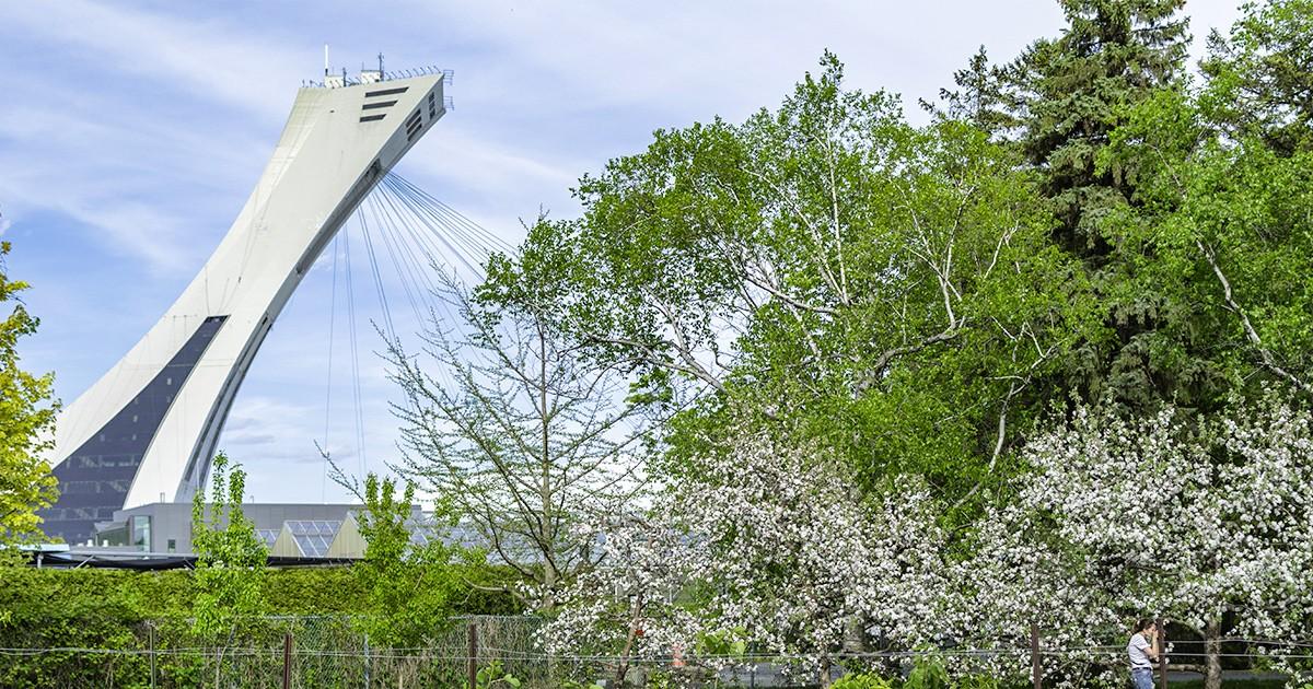 balade-velo-parc-olympique-balade-a-faire-en-velo-montreal-citycrunch