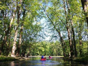 On_a_teste_une_sortie_kayak_avec_Aventure_Mille-Iles_a_Laval