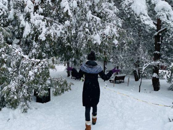 Les_plus_belles_photos_de_Montreal_sous_la_neige