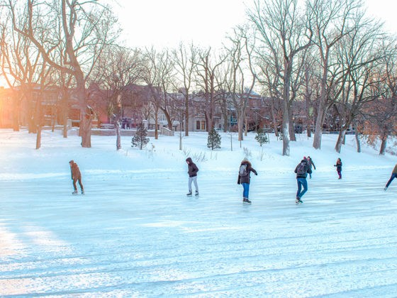 patiner-parc-lafontaine-montreal-citycrunch-blog